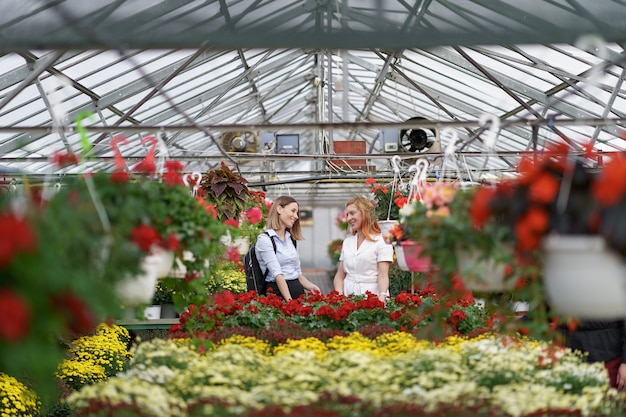 Two women posing in a greenhouse between hundreds of flowers Free Photo