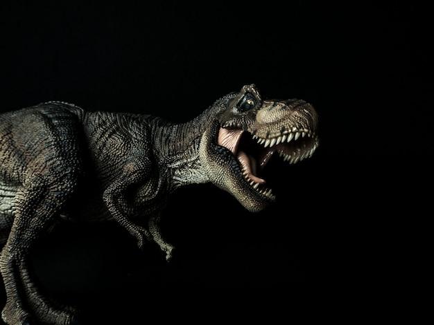 Tyrannosaurus t-rex dinosaur on black Premium Photo