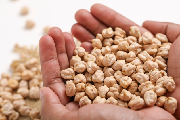 Uncooked dried chickpeas in hand Premium Photo
