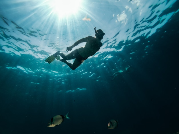 Underwater photo of couple snorkeling in the sea Premium Photo