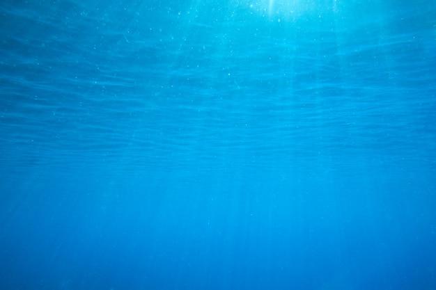 Подводный Premium Фотографии