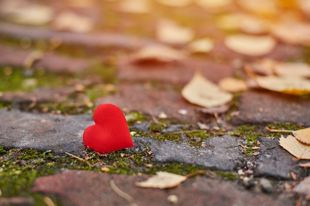 Unrequited, one-sided love or loneliness concept. Premium Photo