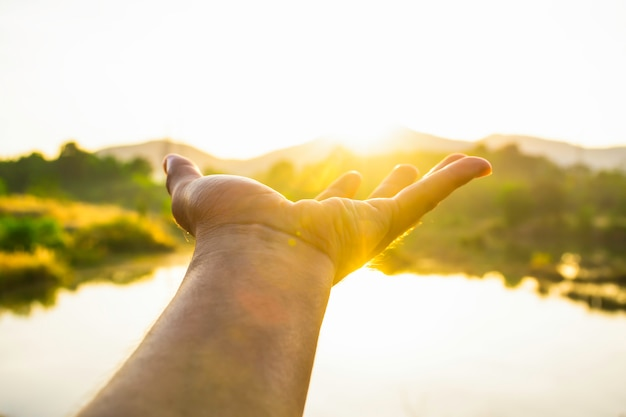 Use hand to touch the sun light in the morning, pick up the sun by hand Premium Photo