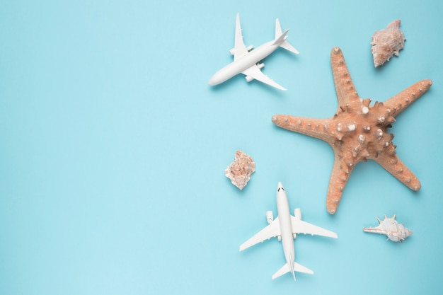 Vacation concept with planes and starfish Free Photo