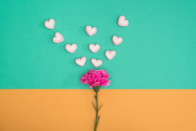 Valentines candy with carnation on green and orange background Free Photo