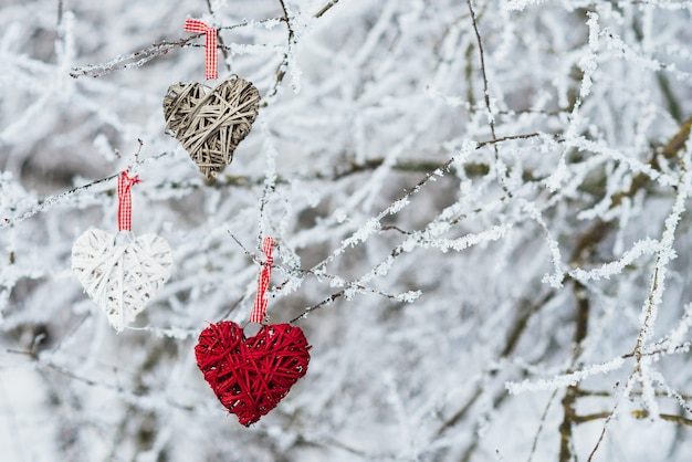 Valentines hearts on winter nature background. valentines day concept. Free Photo