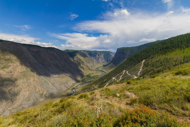 Valley of the river, top view Premium Photo