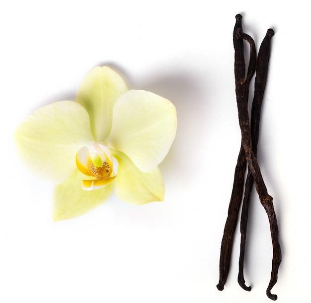 Vanilla stick Free Photo
