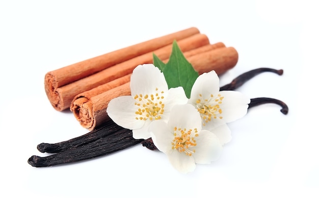 Vanilla sticks and cinnamon with flowerss. Premium Photo