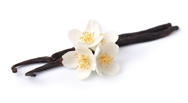 Vanilla sticks with flowerss. Premium Photo
