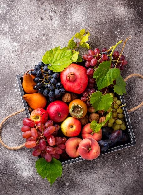 Various autumn fruits. harvest concept Premium Photo