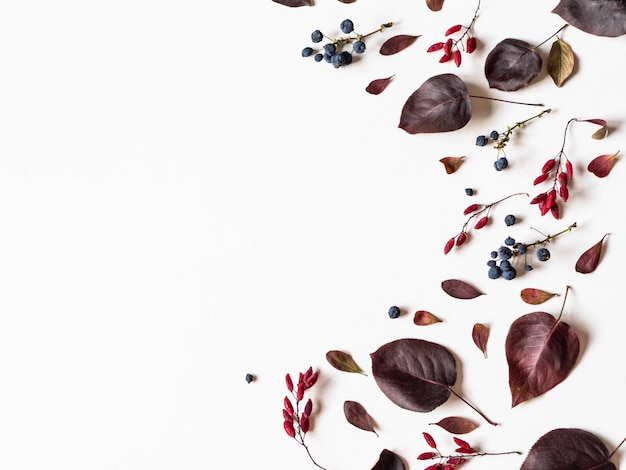 Various berries and leafs of wild trees border isolated on white Premium Photo