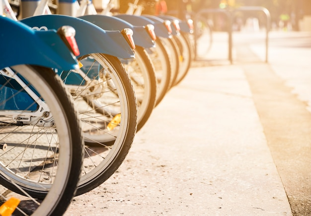 Various bicycles on a rack in sunlight available for rent Free Photo