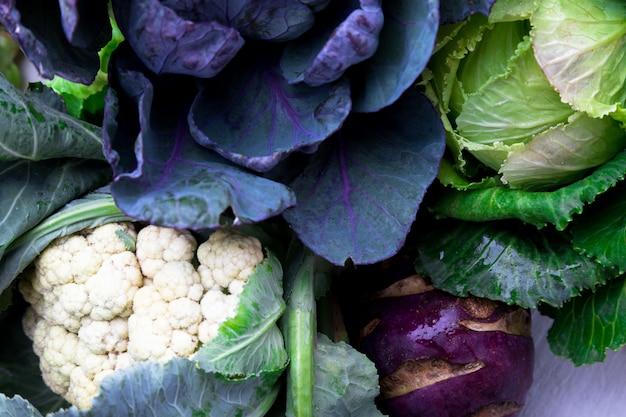 Various of cabbage broccoli cauliflower, Premium Photo