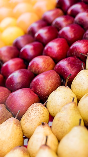 Various delicious fruit high view Free Photo