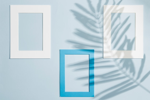 Various frames hanging on a wall and leaves shadows Premium Photo