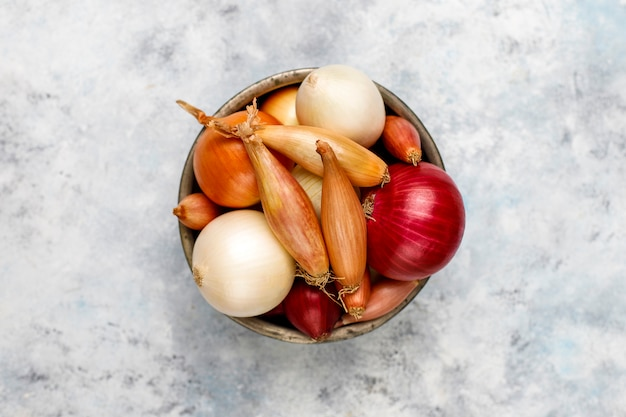 Various types of onions red, white, yellow, shallot, top view Premium Photo