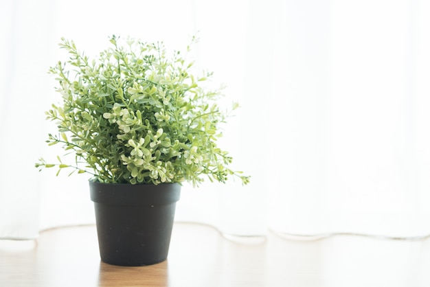 Vase plant decoration in home at window side Free Photo
