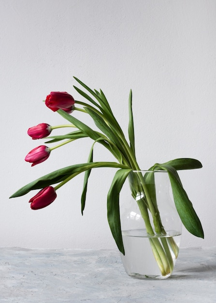 Vase with red and pink tulips Free Photo