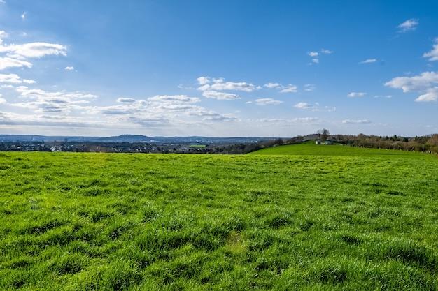 낮에는 푸른 하늘이있는 광대 한 녹색 계곡 무료 사진