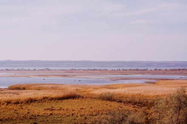 Vaste terre coperte di erba secca con il mare in inverno Foto Gratuite