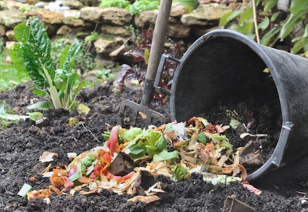 Vegetable peelings for compost Premium Photo