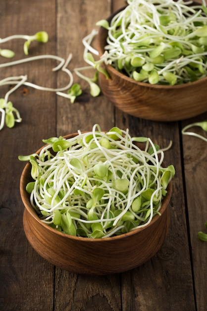 Vegetable young sunflower sprouts on wood Premium Photo