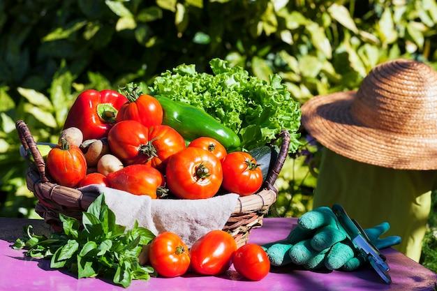 햇빛 아래 바구니에 야채 무료 사진