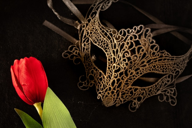 Venetian mask with a red tulip in a dark, suggestively lit environment. mysterious love concept, san valentin day. Premium Photo