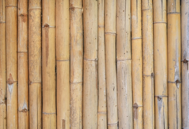 Vertical bamboo fence background. Premium Photo