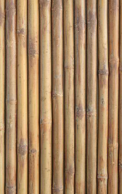 ornamental bamboo fence.htm vertical bamboo fence wall background premium photo  vertical bamboo fence wall background
