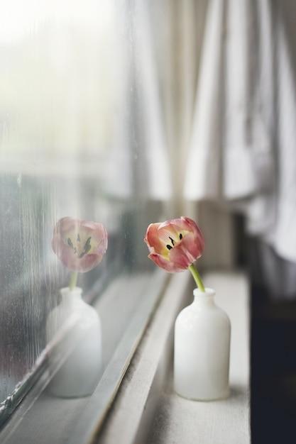 Colpo verticale del primo piano di un tulipano rosa in un vaso bianco su un davanzale Foto Gratuite