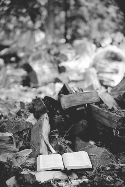 地面に壊れた木の近くの開いた聖書の垂直グレースケールショット 無料写真