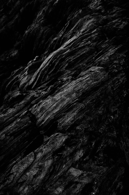Vertical grey scale shot of the patterns of the rocky cliffs Free Photo