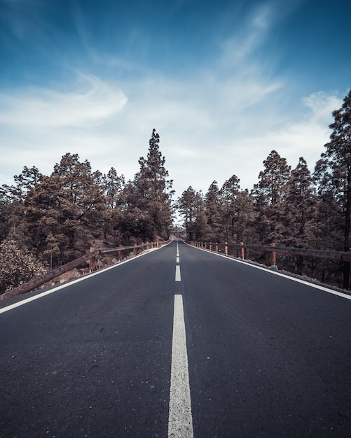 Vertical high angle shot of a highway surrounded by trees under the blue sky Free Photo