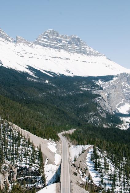 バンフ国立公園の山の近くの森の高速道路の垂直ハイアングルショット 無料写真