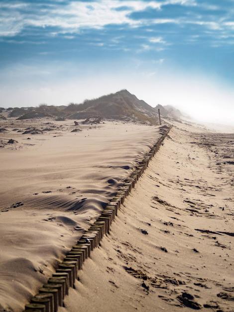 明るい曇り空の下の砂地の垂直ハイアングルショット 無料写真
