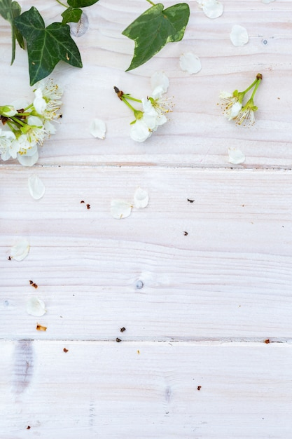 Vertical image of white spring flowers and leaves on a wooden table, flat lay Free Photo