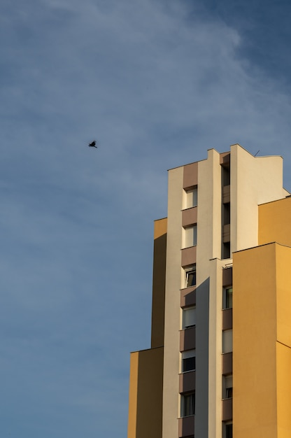 Vertical low angle shot of a bird flying above a concrete modern building Free Photo