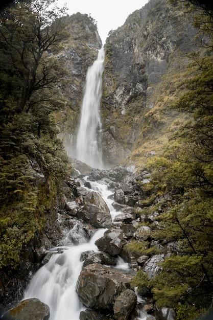 Вертикальное изображение водопада devils punchbowl в окружении зелени в новой зеландии Бесплатные Фотографии