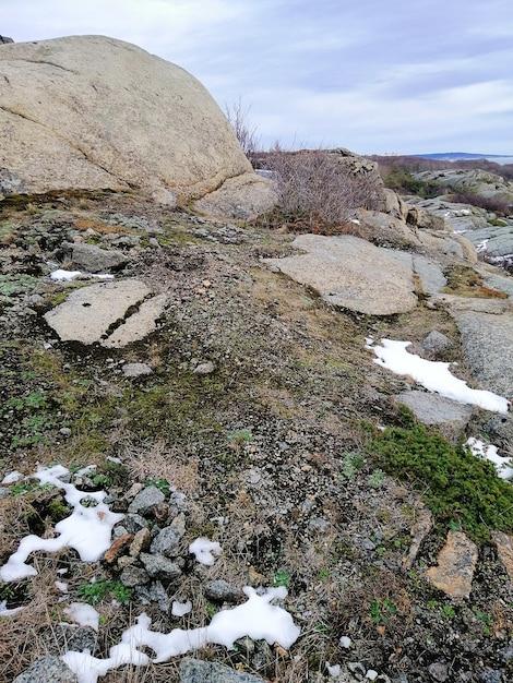 曇り空の下で雪と苔に覆われた岩の垂直方向の写真 無料写真
