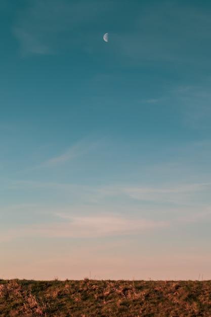저녁 일몰 동안 필드 위의 달과 푸른 하늘의 세로 사진 무료 사진