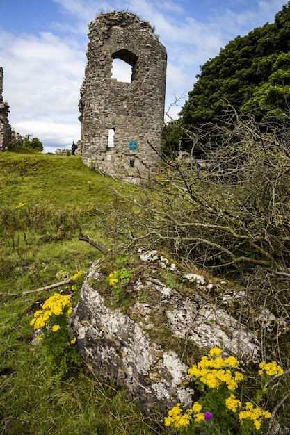 Colpo verticale delle rovine dell'abbazia nella contea di mayo, repubblica d'irlanda Foto Gratuite