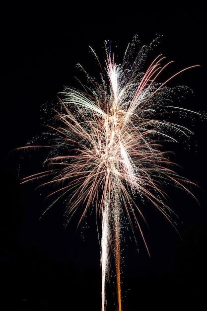Colpo verticale di un bellissimo fuoco d'artificio che esplode Foto Gratuite