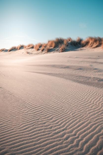 Il colpo verticale del deserto sotto il chiaro cielo blu ha catturato a oostkapelle, paesi bassi Foto Gratuite