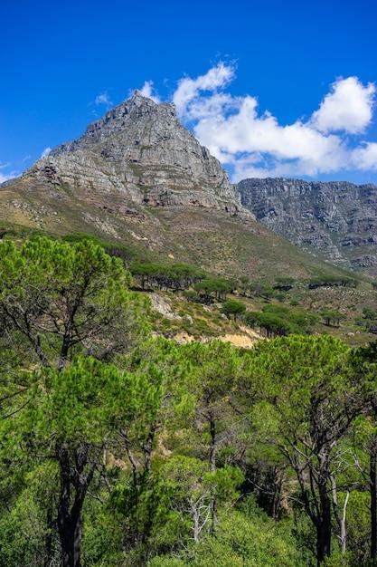 Colpo verticale della montagna famosa della tabella a cape town, sudafrica Foto Gratuite