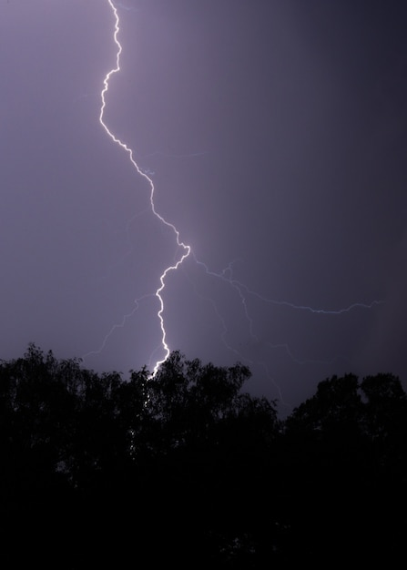 Vertical shot of lightning hitting a tree at night with a purple sky and trees in front Free Photo