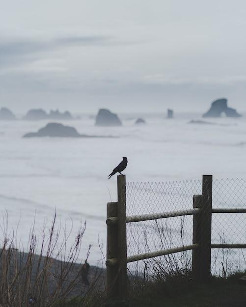 ぼやけた海とフェンスの上に立っている鳥の垂直ショット 無料写真