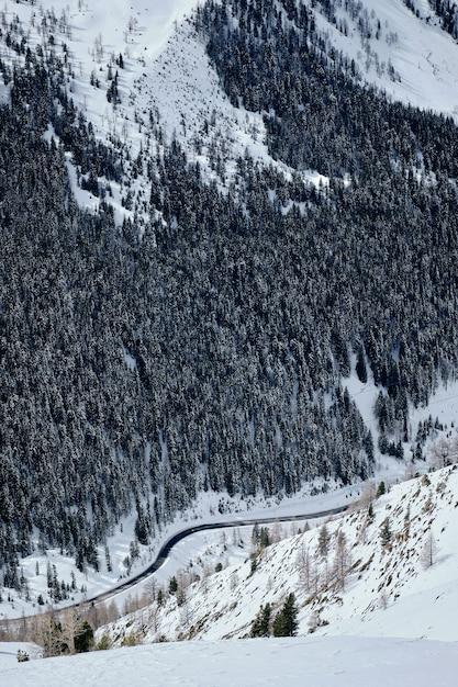 Вертикальный снимок покрытой снегом горы, покрытой лесом, в коль-де-ла-ломбарде - изола 2000, франция Бесплатные Фотографии
