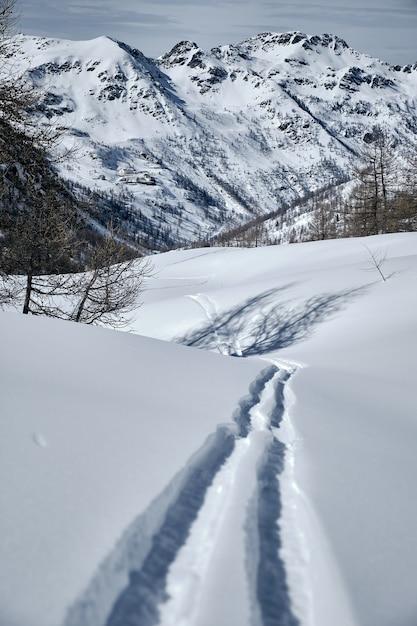 コル・ド・ラ・ロンバルデの雪に覆われた森林に覆われた山の垂直ショット-isola 2000 france 無料写真